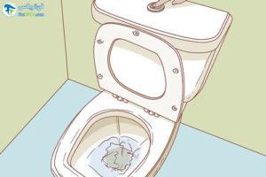 3 اصول استفاده از روکش توالت فرنگی