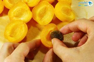 5 فریز کردن زردآلو