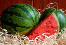 Photo of نحوه فریز کردن هندوانه و نگهداری طولانی مدت آن