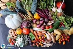 1 کاشت سبزیجات در اواخر تابستان