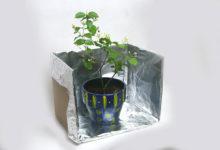 Photo of چگونه از فویل آلومینیومی در باغبانی استفاده کنیم؟