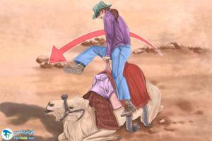 3 آموزش شتر سواری