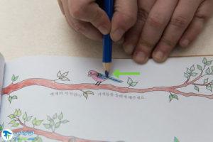 4 آموزش رنگ کردن کتاب رنگ آمیزی