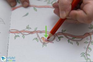5 آموزش رنگ کردن کتابهای نقاشی