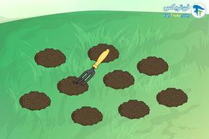 5 تکثیر گیاه گل برفی