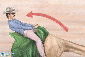 6 آموزش شترسواری