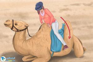 8 آموزش شترسواری