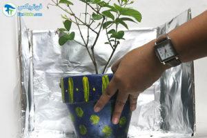9 استفاده فویل آلومینیومی در باغبانی