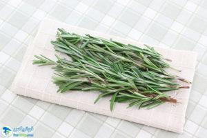 2 روش خشک کردن گیاه رزماری