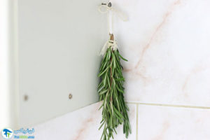 4 روش خشک کردن گیاه رزماری