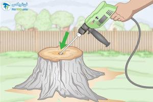 1 سوزاندن کنده درخت