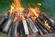 Photo of نحوه سوزاندن و از بین بردن تنه باقی مانده درخت قطع شده
