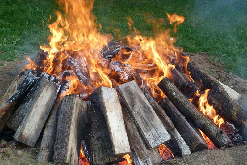 12 سوزاندن کنده درخت